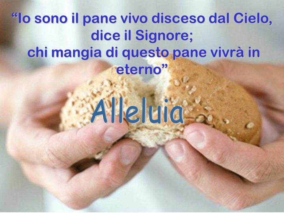 Alleluia Io sono il pane vivo disceso dal Cielo, dice il Signore;