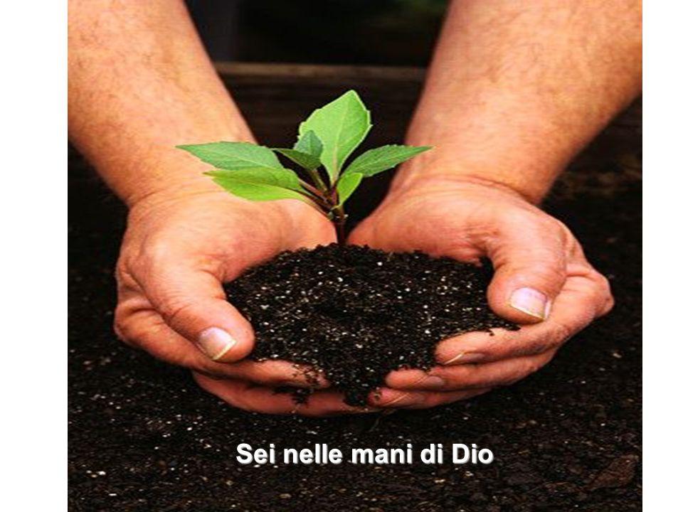 Sei nelle mani di Dio