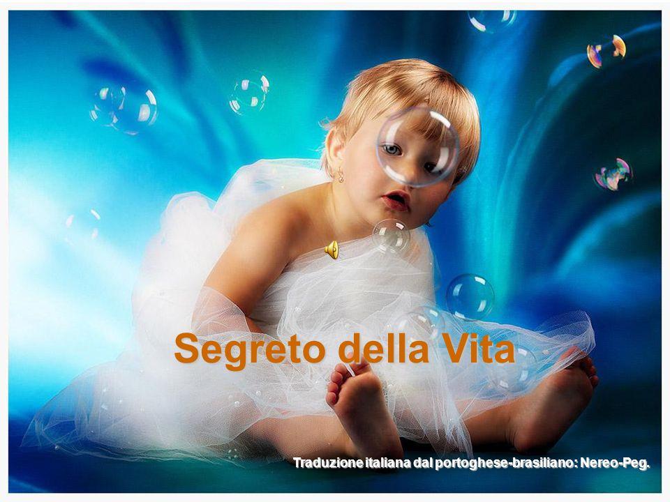 Segreto della Vita Traduzione italiana dal portoghese-brasiliano: Nereo-Peg.