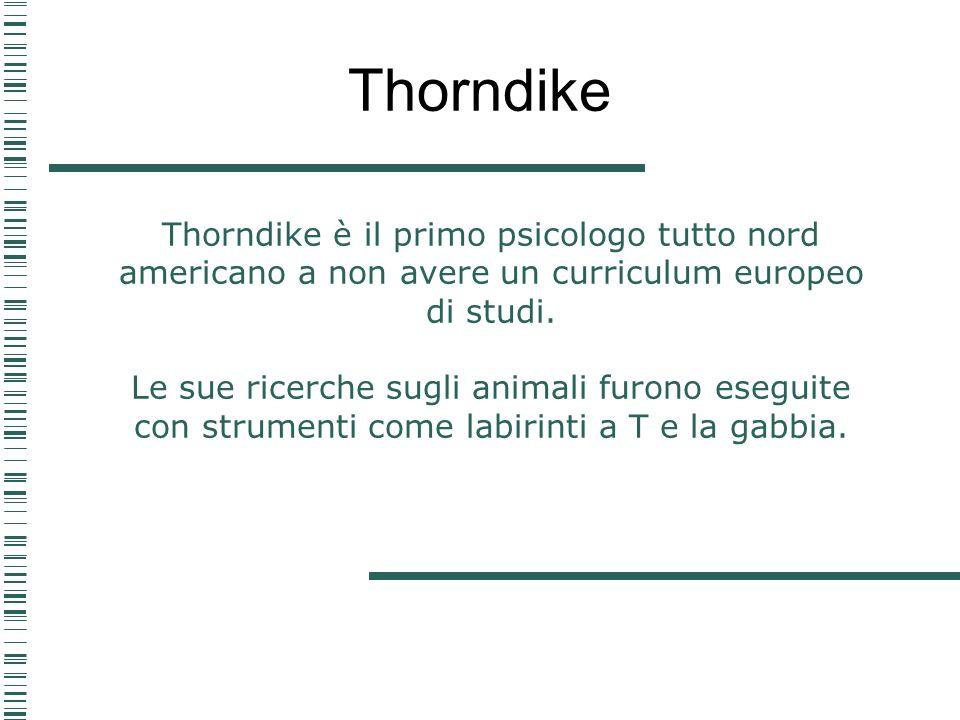 Thorndike Thorndike è il primo psicologo tutto nord americano a non avere un curriculum europeo di studi.