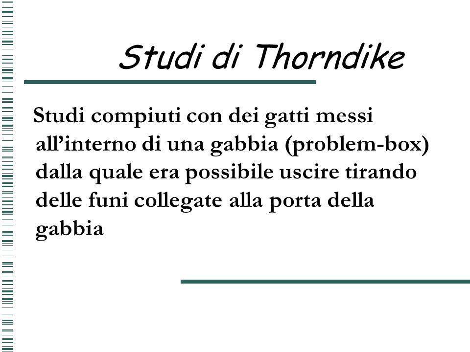 Studi di Thorndike