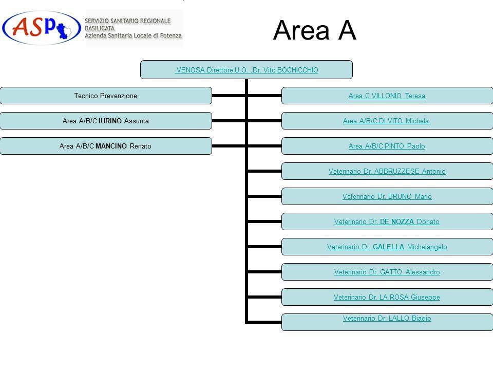 Area A