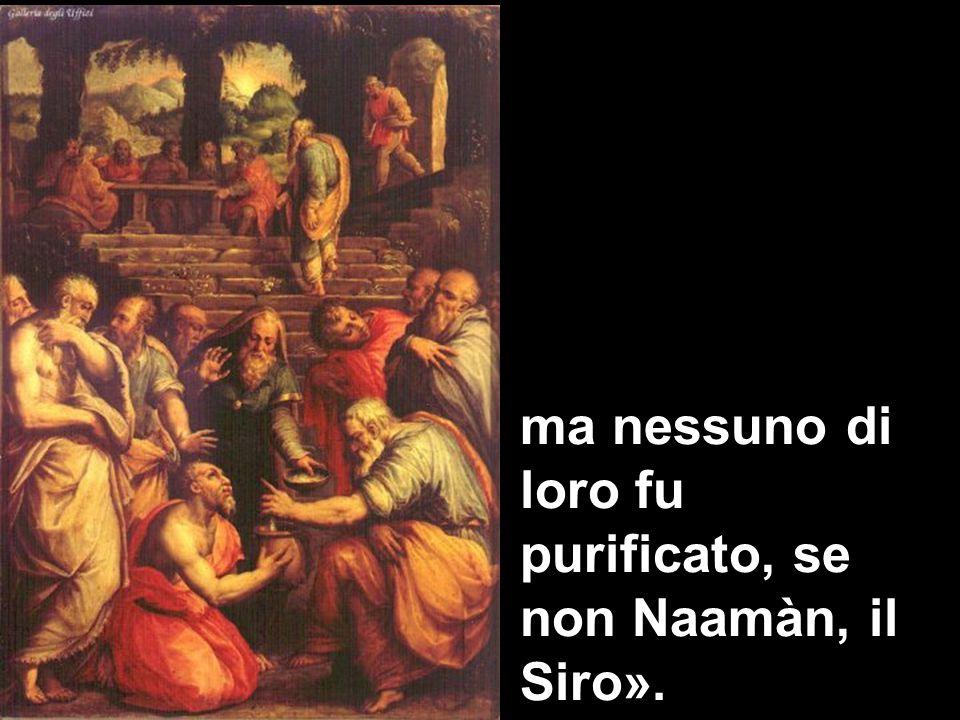 ma nessuno di loro fu purificato, se non Naamàn, il Siro».