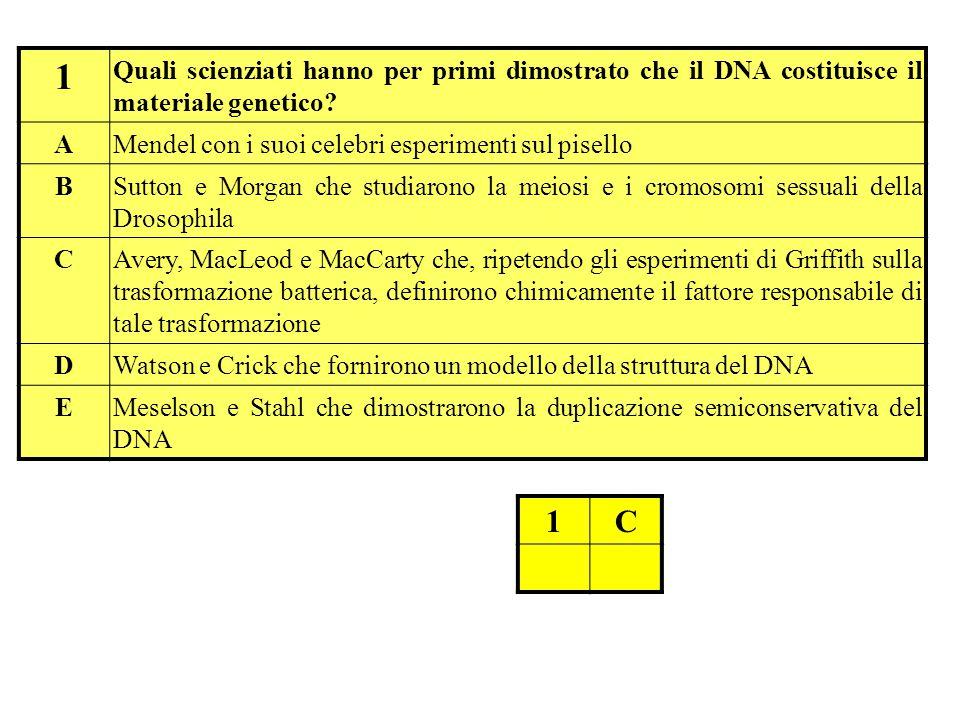 1 Quali scienziati hanno per primi dimostrato che il DNA costituisce il materiale genetico A. Mendel con i suoi celebri esperimenti sul pisello.