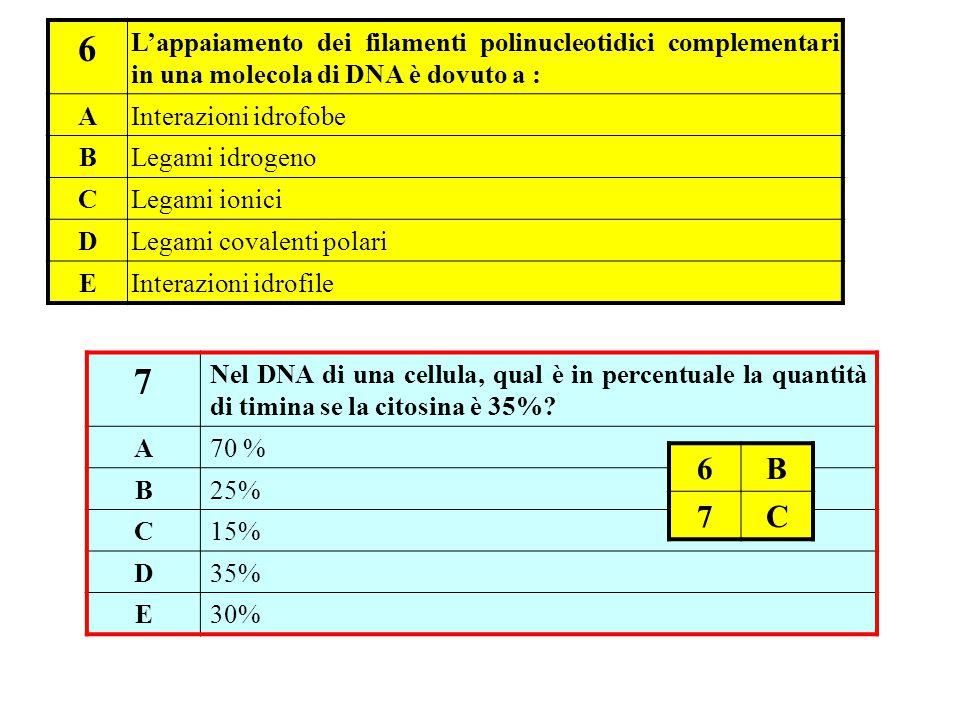 6 L'appaiamento dei filamenti polinucleotidici complementari in una molecola di DNA è dovuto a : A.
