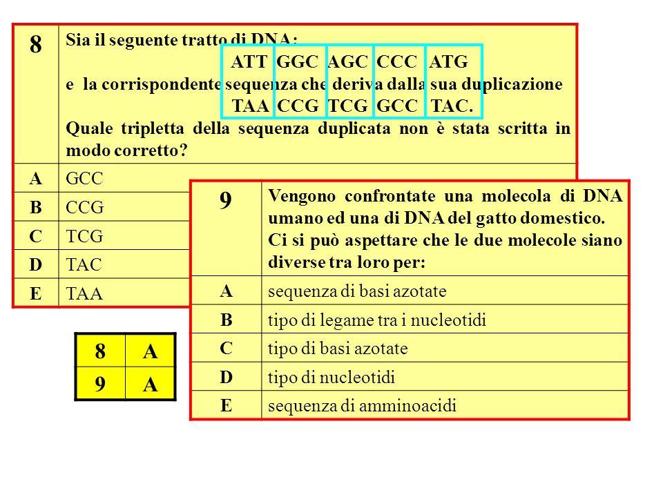 8 9 8 A 9 Sia il seguente tratto di DNA: ATT GGC AGC CCC ATG