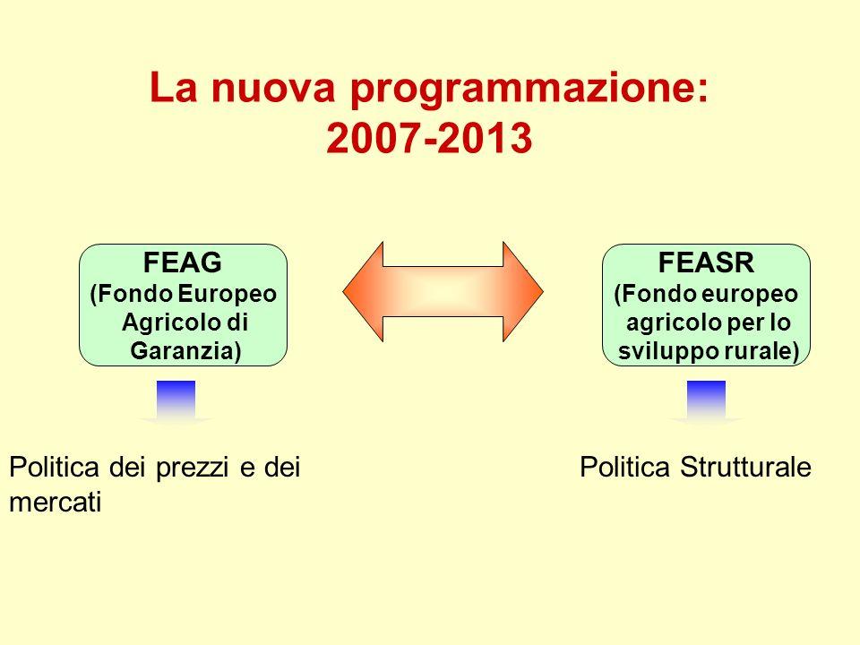 La nuova programmazione: 2007-2013