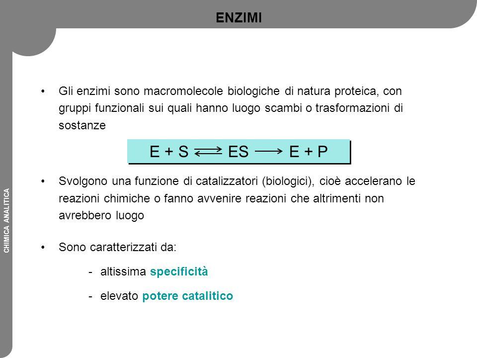 ENZIMI Gli enzimi sono macromolecole biologiche di natura proteica, con gruppi funzionali sui quali hanno luogo scambi o trasformazioni di sostanze.