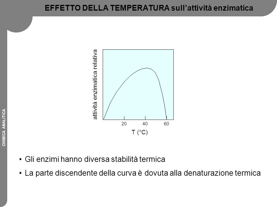 EFFETTO DELLA TEMPERATURA sull'attività enzimatica