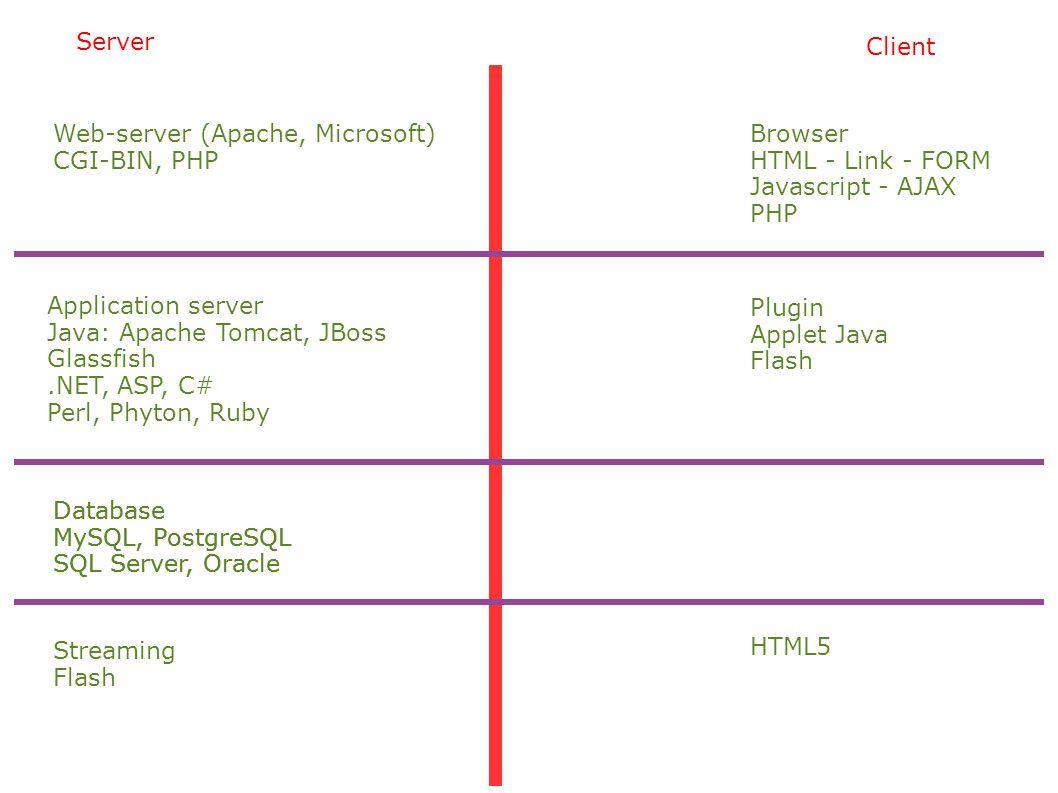 Server Client. Web-server (Apache, Microsoft) CGI-BIN, PHP. Browser. HTML - Link - FORM. Javascript - AJAX.