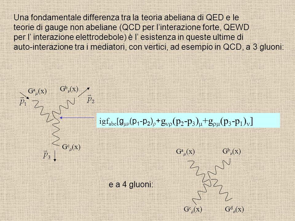 Una fondamentale differenza tra la teoria abeliana di QED e le