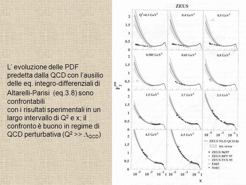 L' evoluzione delle PDF predetta dalla QCD con l'ausilio delle eq