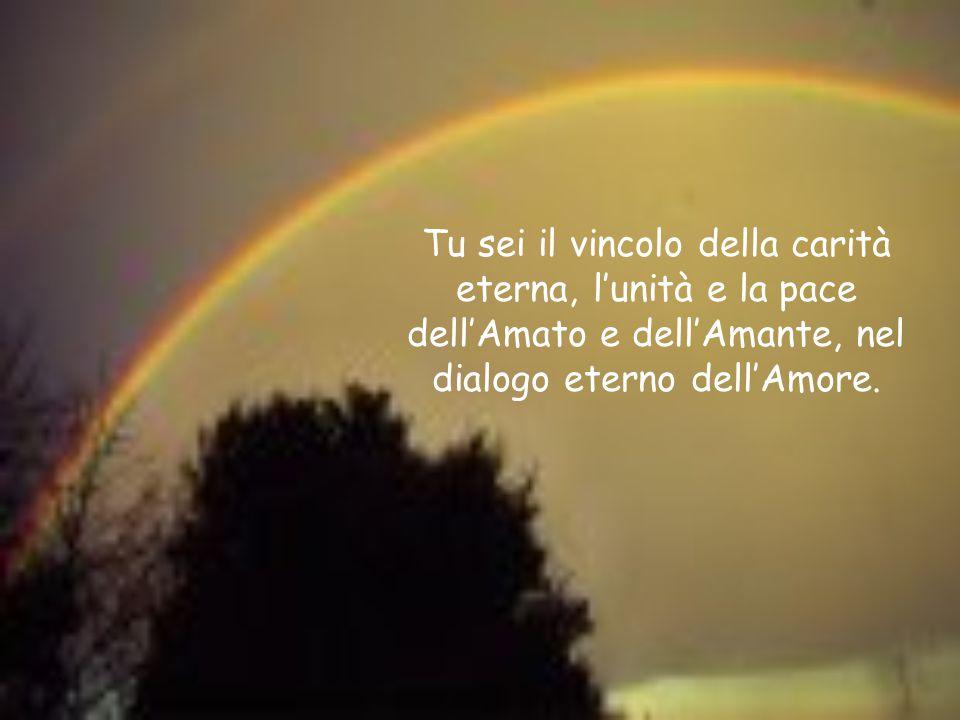 Tu sei il vincolo della carità eterna, l'unità e la pace dell'Amato e dell'Amante, nel dialogo eterno dell'Amore.