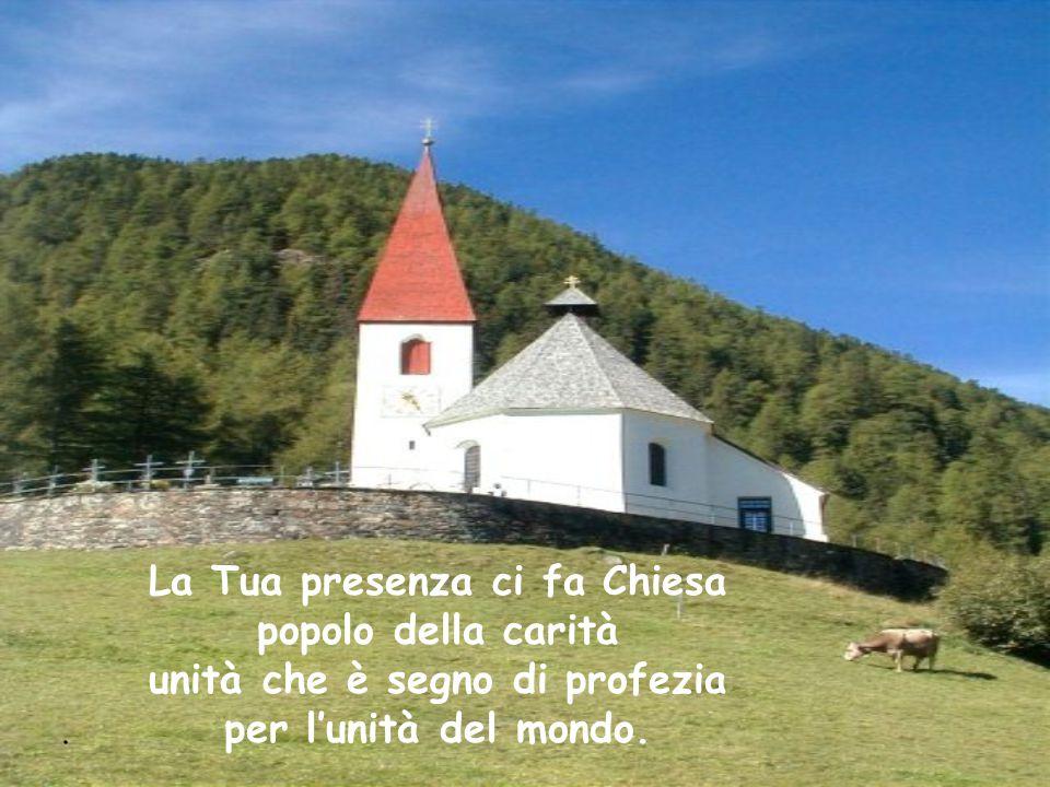 La Tua presenza ci fa Chiesa popolo della carità unità che è segno di profezia per l'unità del mondo.