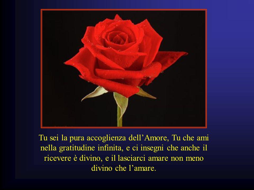 Tu sei la pura accoglienza dell'Amore, Tu che ami nella gratitudine infinita, e ci insegni che anche il ricevere è divino, e il lasciarci amare non meno divino che l'amare.