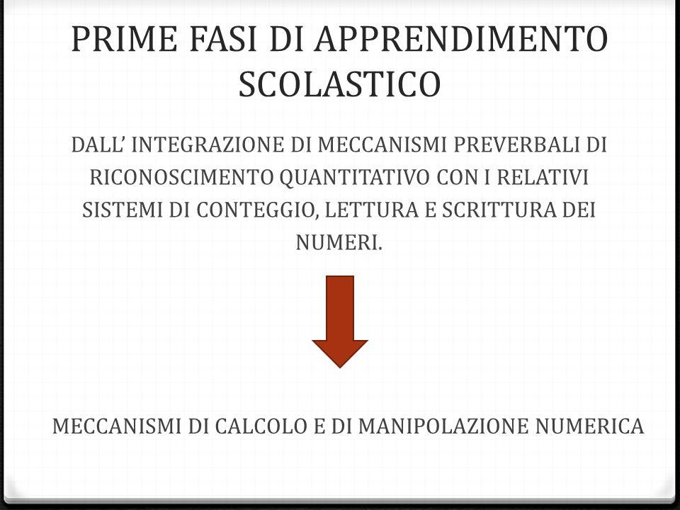 PRIME FASI DI APPRENDIMENTO SCOLASTICO