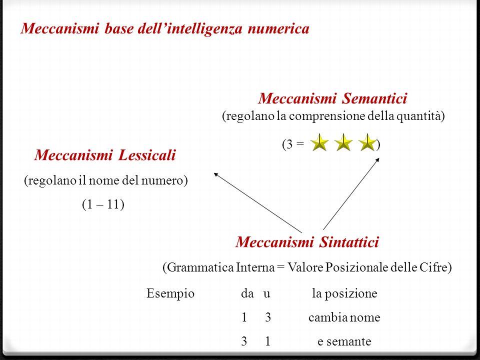 Meccanismi base dell'intelligenza numerica