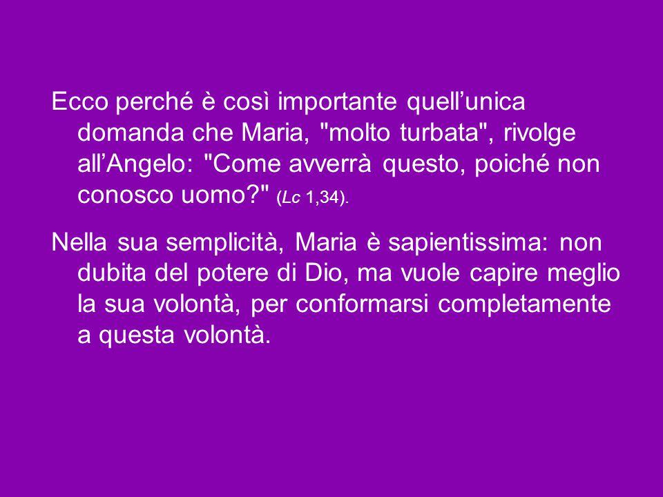 Ecco perché è così importante quell'unica domanda che Maria, molto turbata , rivolge all'Angelo: Come avverrà questo, poiché non conosco uomo (Lc 1,34).
