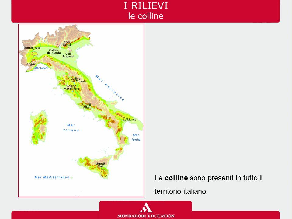 I RILIEVI le colline Le colline sono presenti in tutto il territorio italiano.