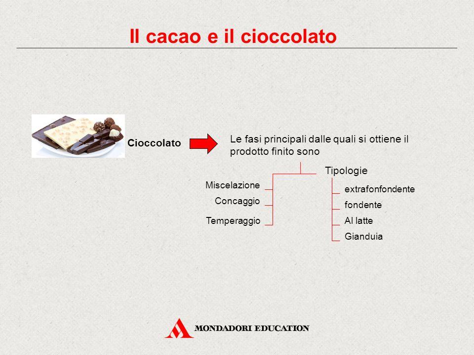 Il cacao e il cioccolato