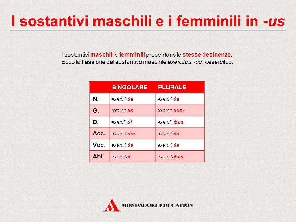 I sostantivi maschili e i femminili in -us