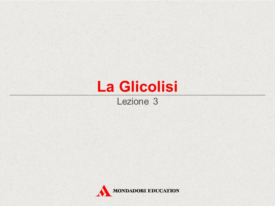 La Glicolisi Lezione 3