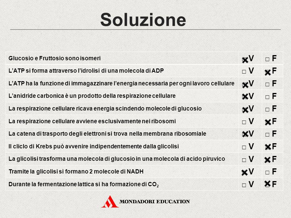 Soluzione □ V □ F Glucosio e Fruttosio sono isomeri