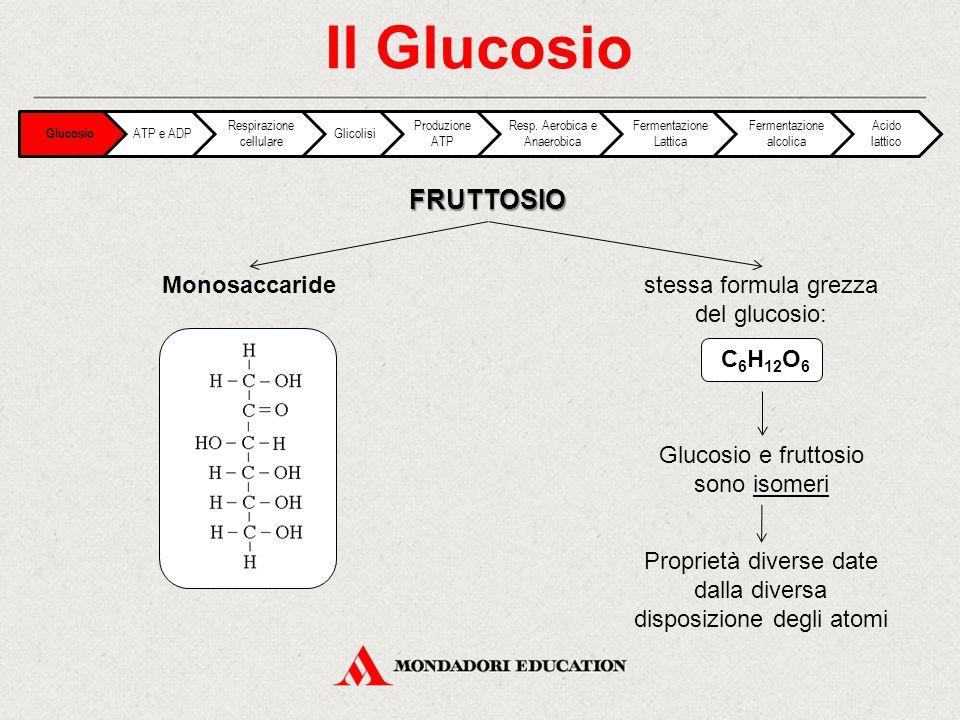 Il Glucosio FRUTTOSIO Monosaccaride