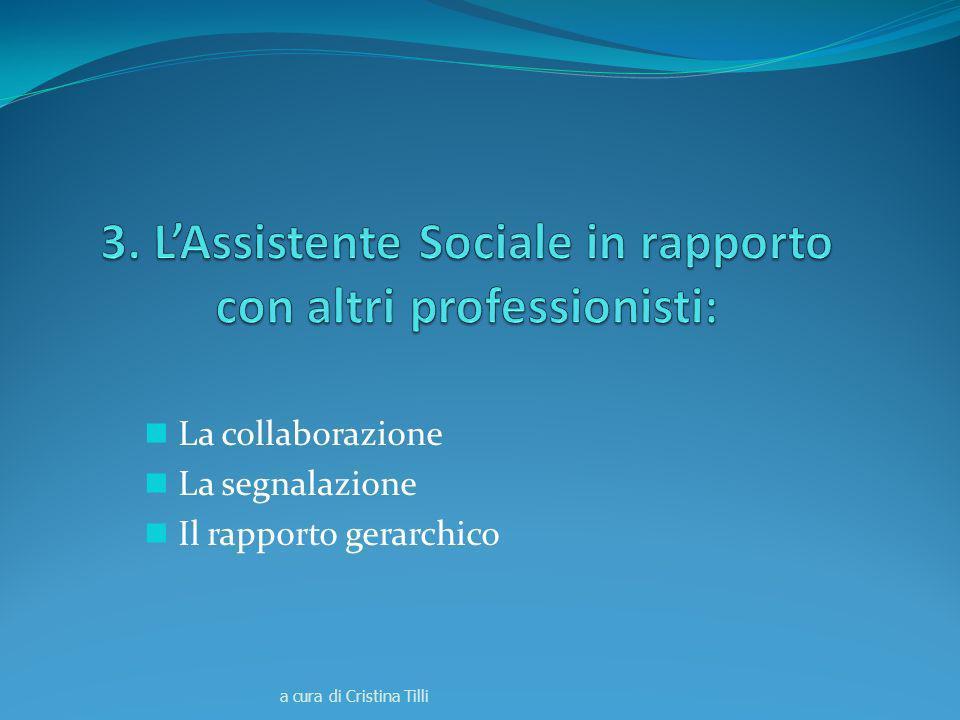 3. L'Assistente Sociale in rapporto con altri professionisti: