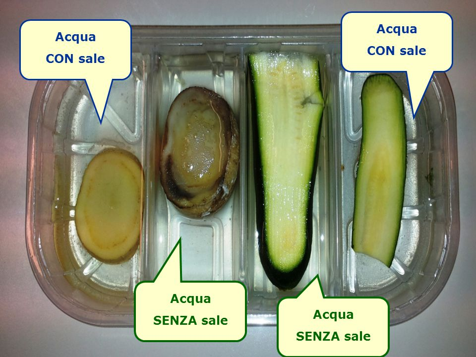 Acqua CON sale Acqua CON sale Acqua SENZA sale Acqua SENZA sale