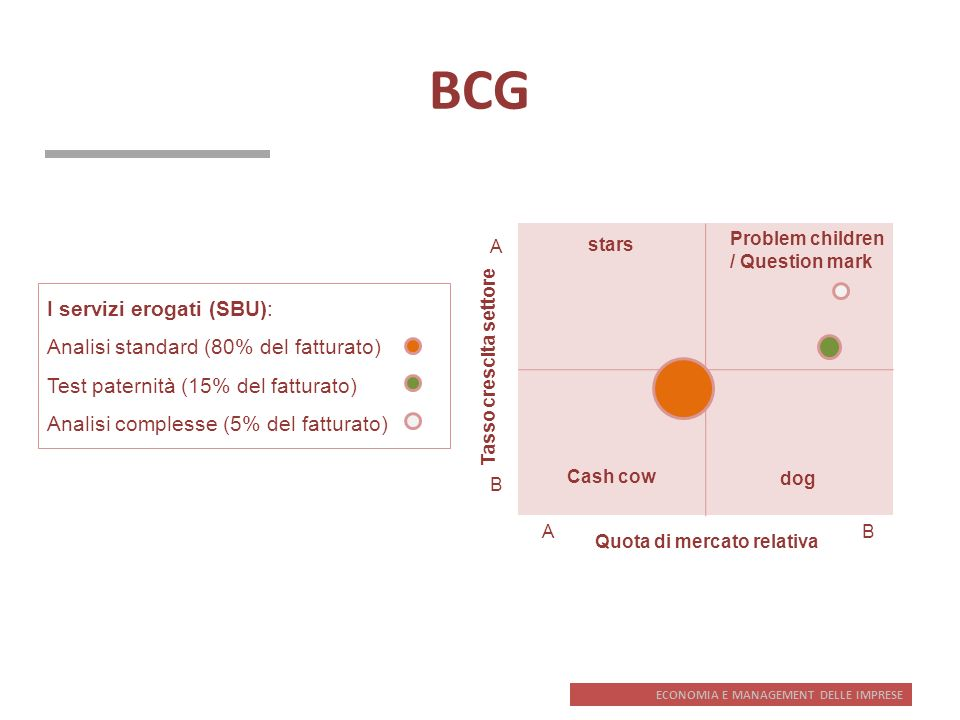 BCG I servizi erogati (SBU): Analisi standard (80% del fatturato)