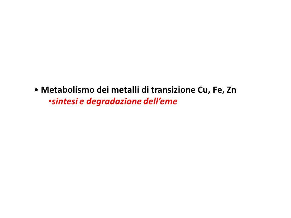 Metabolismo dei metalli di transizione Cu, Fe, Zn