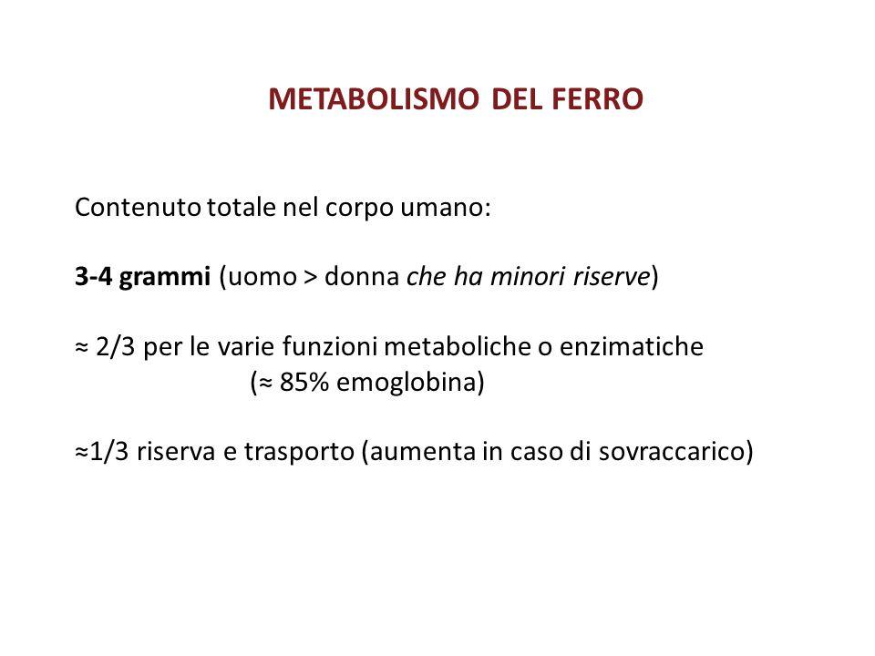 METABOLISMO DEL FERRO Contenuto totale nel corpo umano:
