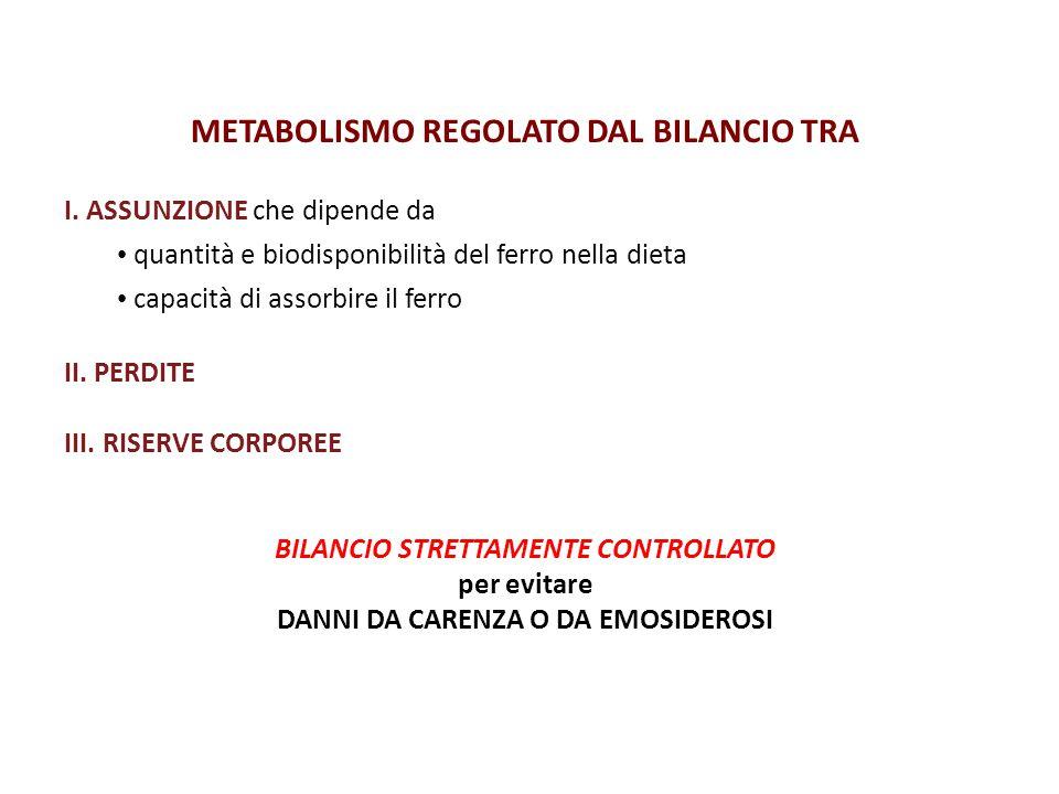 METABOLISMO REGOLATO DAL BILANCIO TRA
