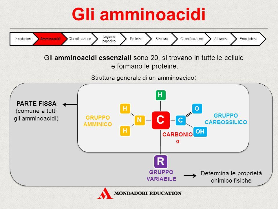 Gli amminoacidi Introduzione. Amminoacidi. Classificazione. Legame peptidico. Proteine. Struttura.