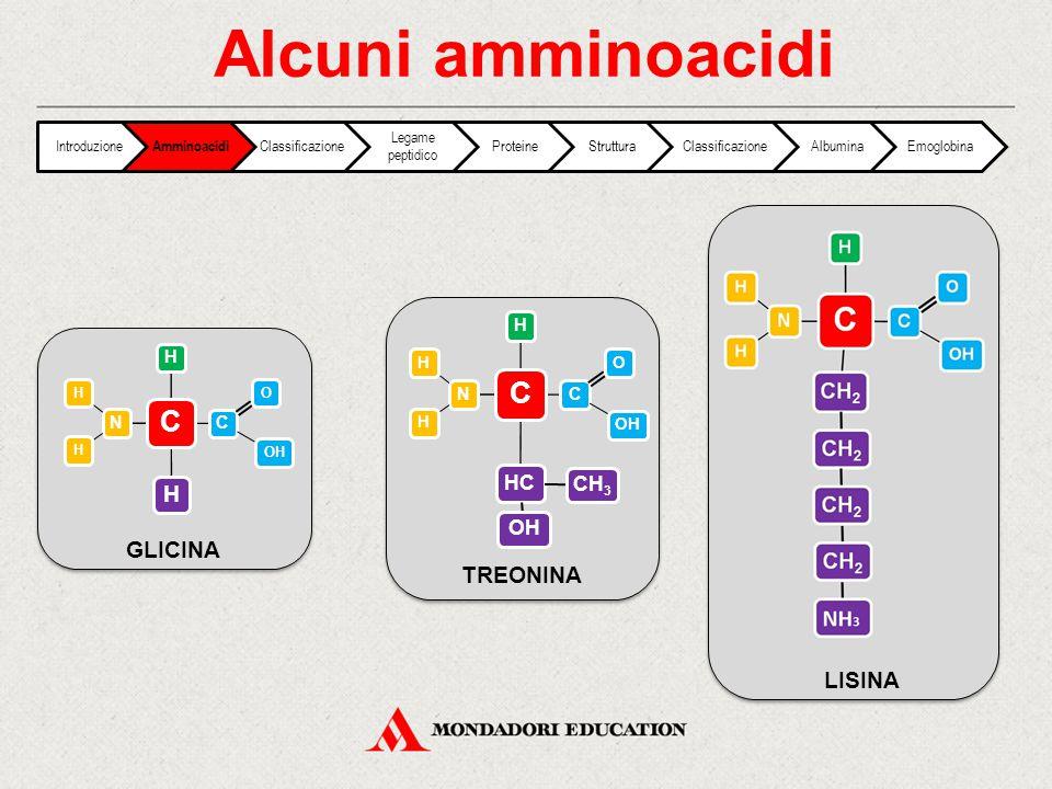 Alcuni amminoacidi GLICINA TREONINA LISINA HC CH3 Introduzione