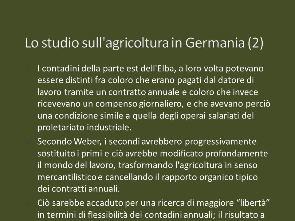 Lo studio sull agricoltura in Germania (2)