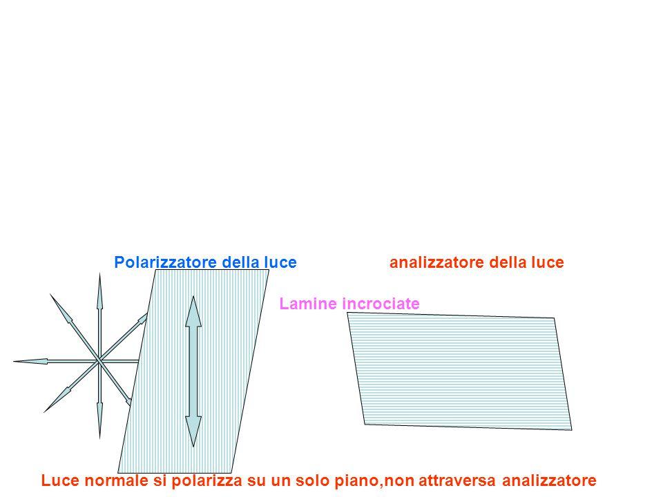 Polarizzatore della luce analizzatore della luce