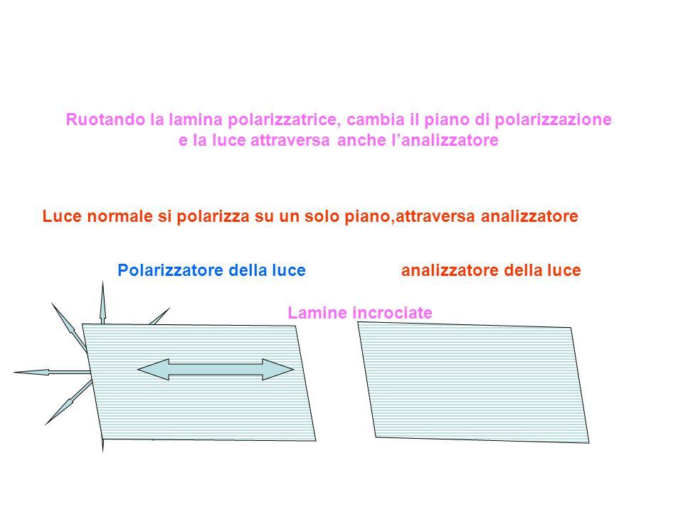Ruotando la lamina polarizzatrice, cambia il piano di polarizzazione e la luce attraversa anche l'analizzatore