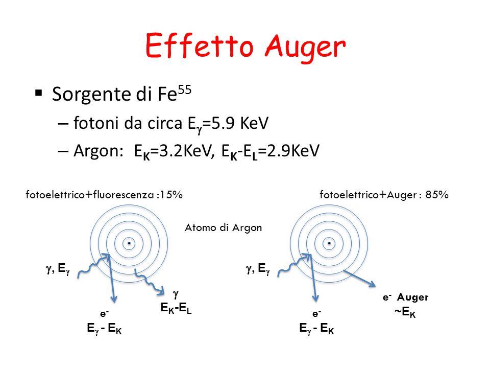 Effetto Auger Sorgente di Fe55 fotoni da circa Eg=5.9 KeV