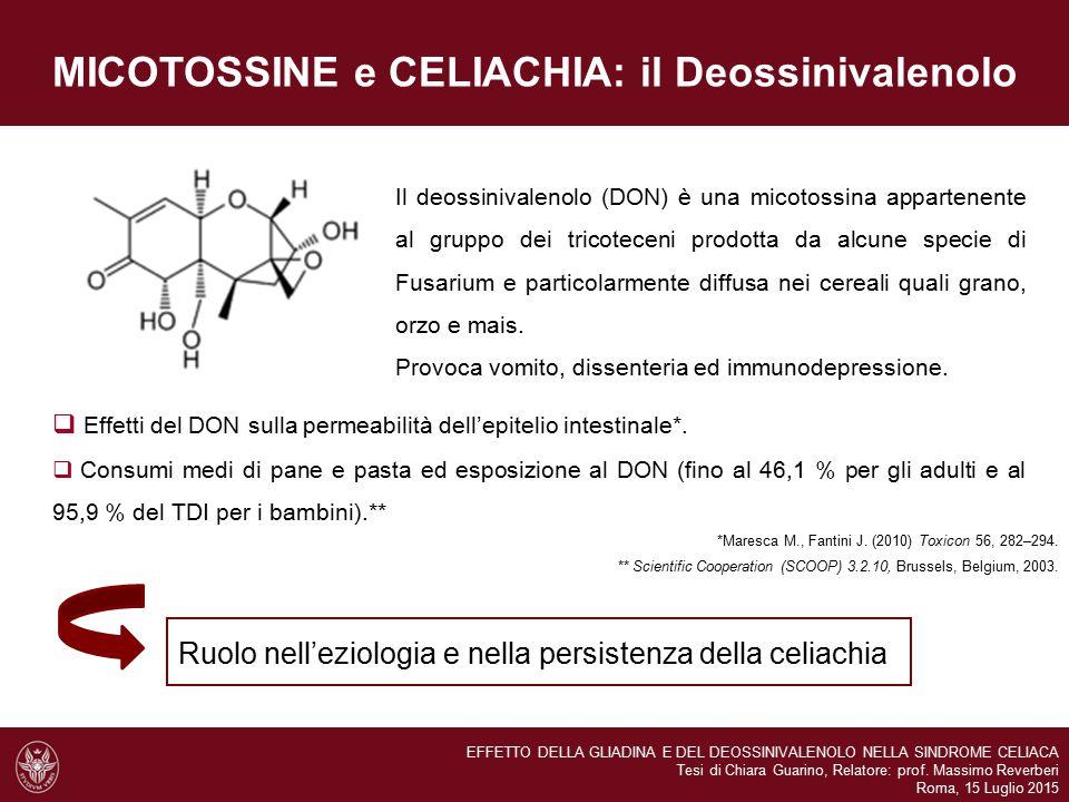 MICOTOSSINE e CELIACHIA: il Deossinivalenolo