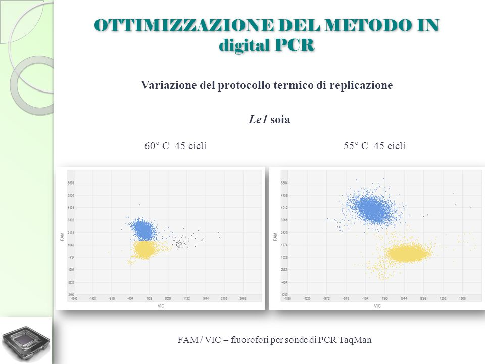 Variazione del protocollo termico di replicazione
