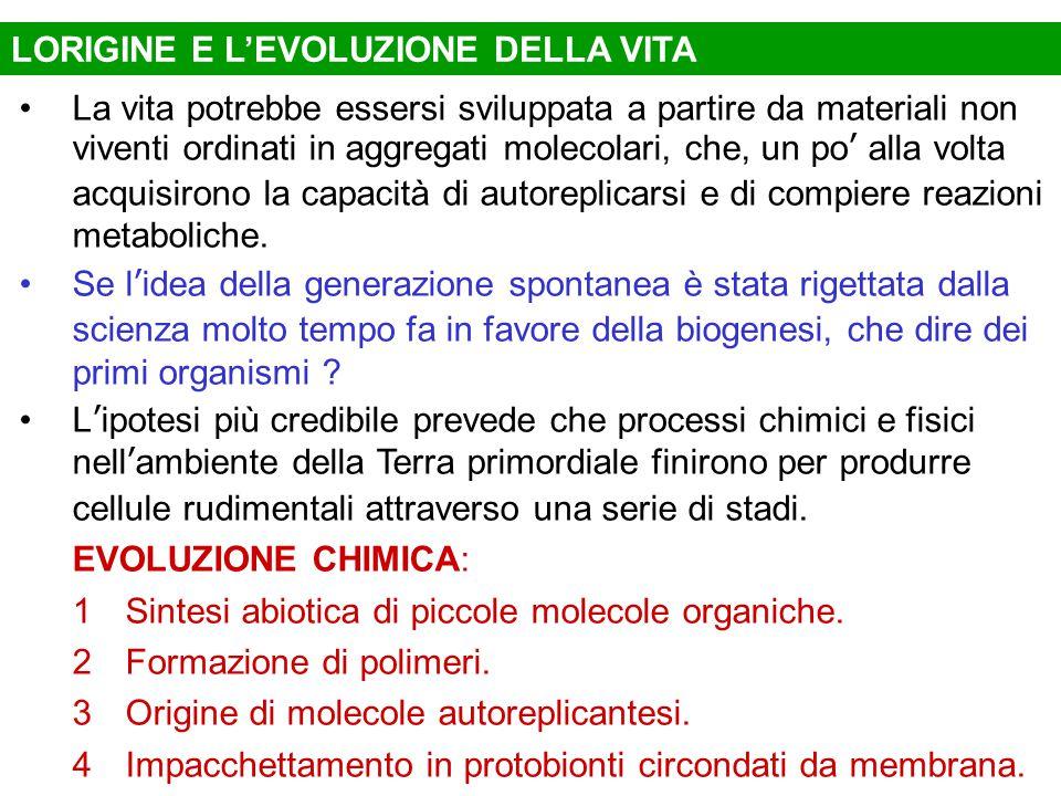 LORIGINE E L'EVOLUZIONE DELLA VITA