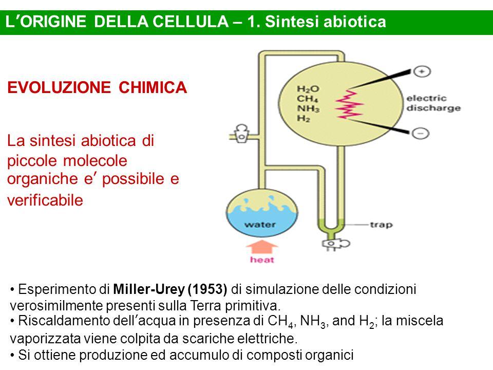 L'ORIGINE DELLA CELLULA – 1. Sintesi abiotica