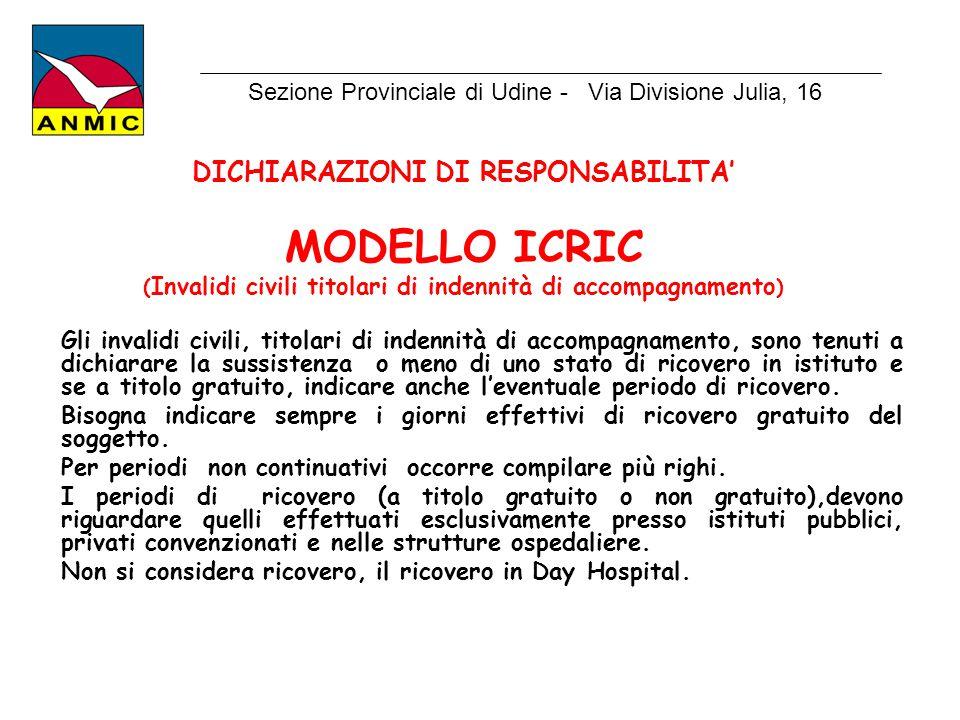 MODELLO ICRIC DICHIARAZIONI DI RESPONSABILITA'
