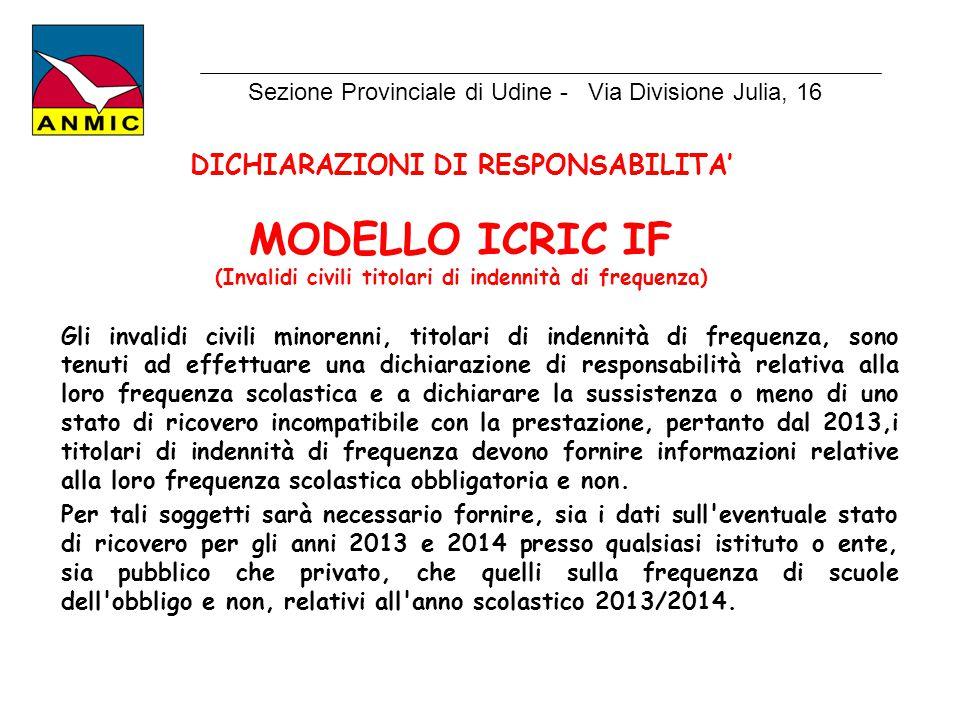 MODELLO ICRIC IF DICHIARAZIONI DI RESPONSABILITA'