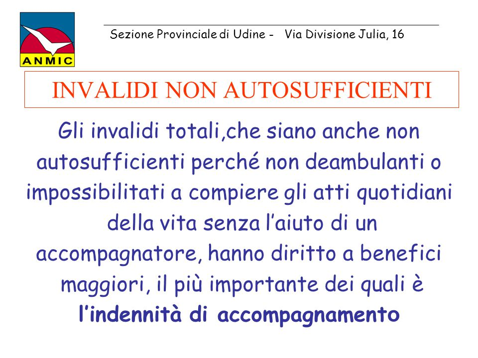 INVALIDI NON AUTOSUFFICIENTI