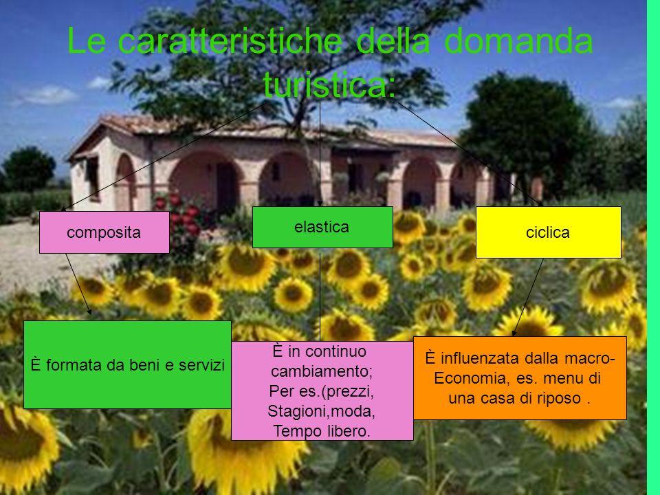 Le caratteristiche della domanda turistica: