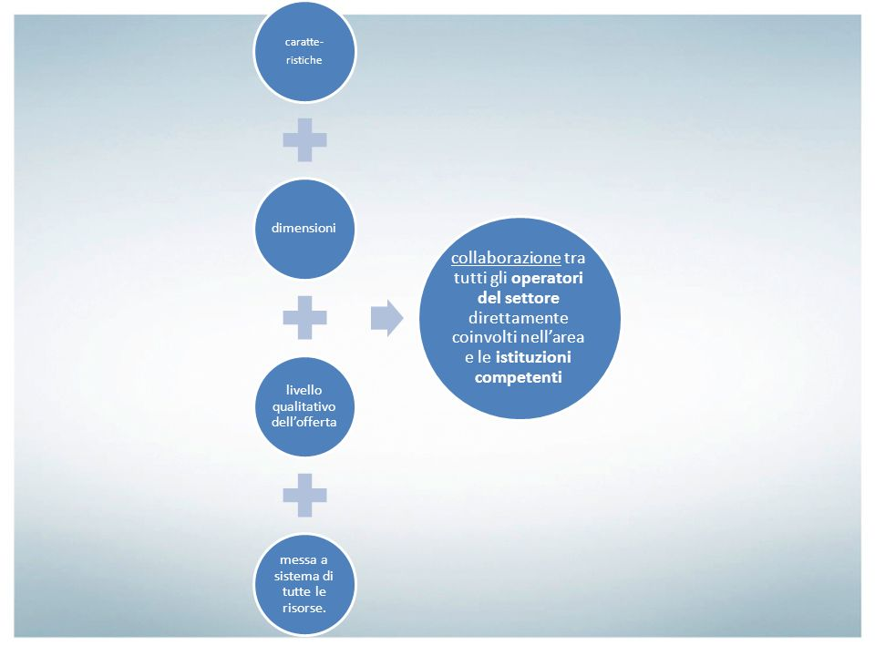 caratte- ristiche dimensioni livello qualitativo dell'offerta