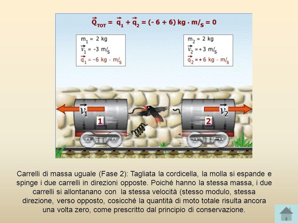 Carrelli di massa uguale (Fase 2): Tagliata la cordicella, la molla si espande e spinge i due carrelli in direzioni opposte.